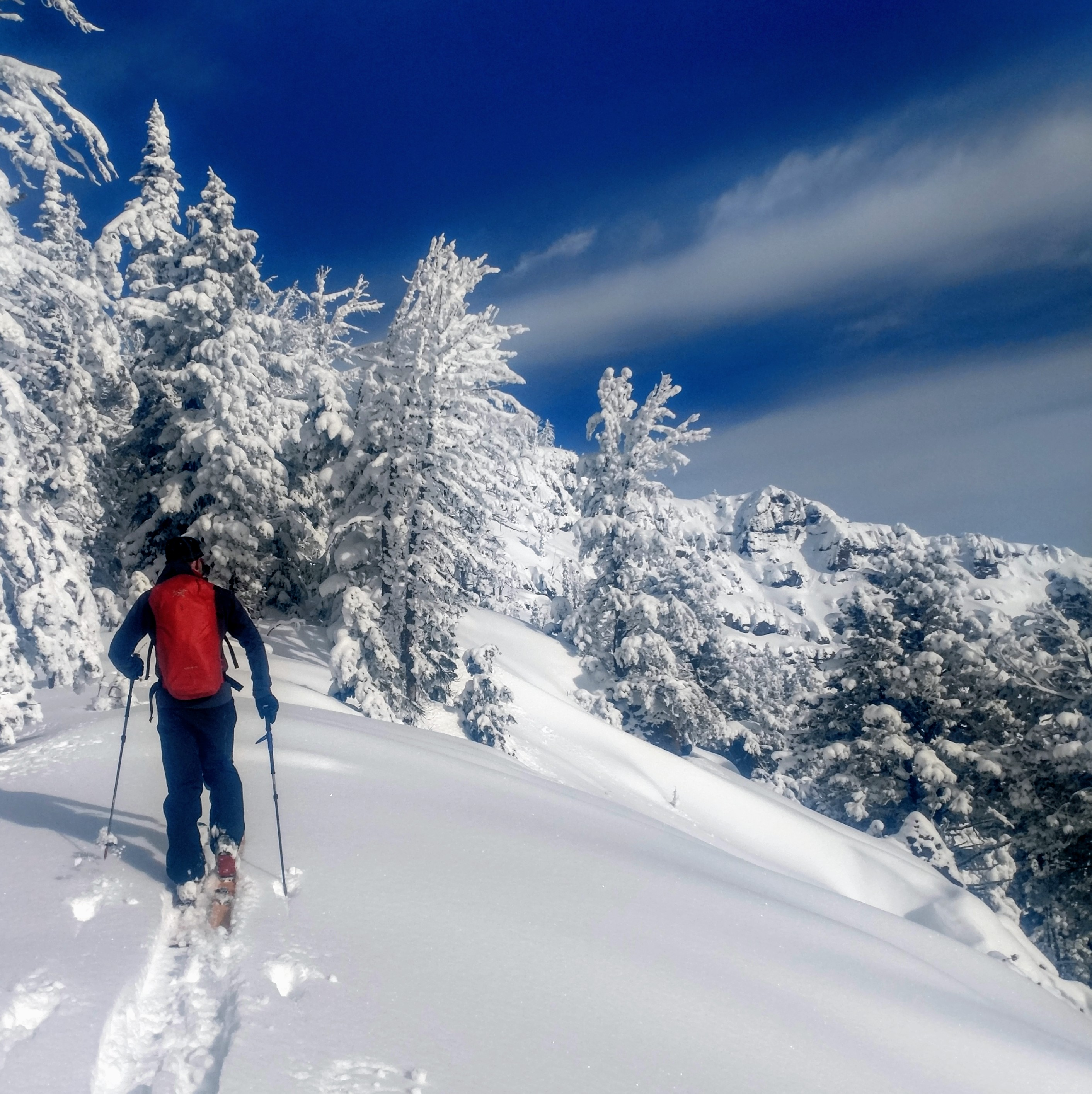 Beartooth Powder Guides   Hut Trips, Education and Guided